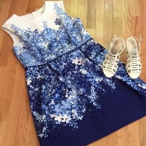 Dress Barn Summer Dress